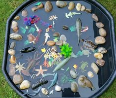 Tuff spot tray rock pool – to Eyfs Activities, Nursery Activities, Water Activities, Preschool Activities, Family Activities, Indoor Activities, Summer Activities, Water Games, Early Childhood Activities