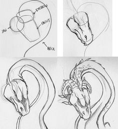 как нарисовать китайского дракона