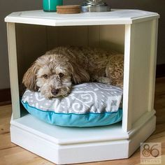 """1,026 Likes, 39 Comments - Home Decor Diy Roomspiraton (@roomspiration_diy) on Instagram: """"Dog rest area within your furniture.... What do u think?"""""""