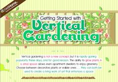 Get Started With Vertical Gardening (Infographic) : TreeHugger