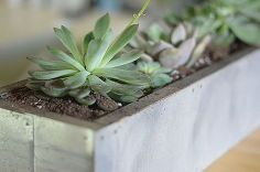 zinc succulent planter, diy, flowers, gardening, home decor, how to, succulents, woodworking projects