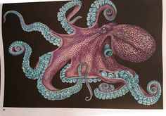 Octopus 2 Page 35 By Caroline W Coloring BooksAdult