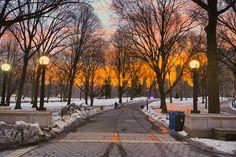 Central+Park+New+York | Central Park in New York