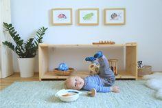 Jakobs Zimmer heute (5 Monate alt)