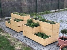 Gardening season, partially failed first attempt Pallet Projects, Garden Projects, Decking Ideas, Backyard Privacy, Wooden Planters, Planter Ideas, Woodworking As A Hobby, Flower Beds, Garden Beds