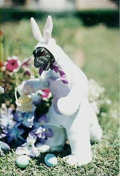 Godzilla Bunny