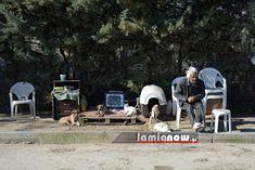 η ΜΕΤΑβαση: Άστεγος στην Λαμία που φροντίζει αδέσποτα, χρειάζε...