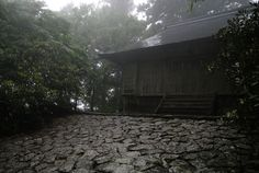mysterious, Tamaki Shrine, Nara, Japan
