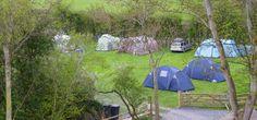 Plas Farm North Wales, Caravan, Touring, Park, Summer, Summer Recipes, Parks, Summer Time, Verano