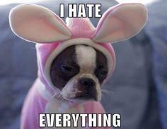 poor thing..