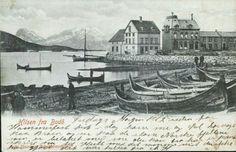 Nordland fylke BODØ. Fra havna med fiskebåter utg Sofie Hammer, Tobaksforretning, postgått 1904