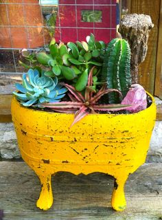 Yellow Wooden Cactus/Succulent arrangement!
