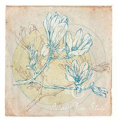 "Dogwood Branch Drawing 10""x10.5"" fine art print, photo illustration, wall art. $30.00, via Etsy."
