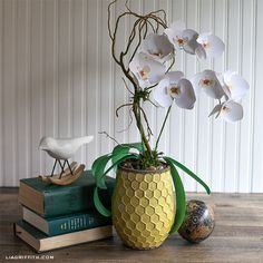 DIY Paper Crafts : How to Make a Gorgeous Paper Orchid Plant How To Make Paper Flowers, Flowers For You, Paper Flowers Diy, Flower Crafts, Handmade Flowers, Diy Fleur Papier, Papier Diy, Fleurs Diy, Plant Projects