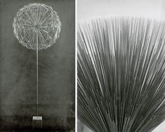 Two photographs of Harry Bertoia's Sonambient sculptures | PC: Knoll Archive | Knoll Inspiration