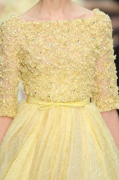 Elie Saab Haute Couture Spring 2012.   To buy, when I figure out how to grow a money tree.