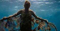 MUSA Museu Subaquático de Arte em Cancún no México #viagem #viajar #turismo