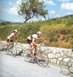 Fast Eddy's Flandria Cafe: Photos of the day: Spanish pocket climbers in the maglia rosa Vintage Cycles, Climbers, Biker, Spanish, Bicycle, Racing, Explore, History, Sports