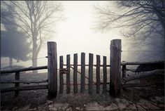 """""""Beyond the Gate.""""   This photo was taken on January 9, 2013 in Vercelli, Piedmont, IT, by beppeverge."""