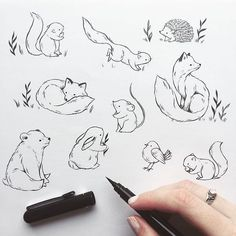 Precious furry ones with cheeky tails Have a fun Friday everyone #pentel #pentelbrushpen #ink #animals #fur #furry #fox #bear #rabbit #squirrel #flowers #practice #bird #hedgehog #illustration #illustrator #sketchbook #learn #artsupply #doodle #friday #fun #love #cute #forest