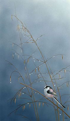 Long Tailed Tit Bird Painting by artist Toni Watts