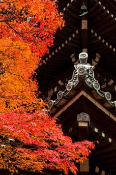 Pagoda of Shinnyo-do with autumn leaves, Kyoto, Japan