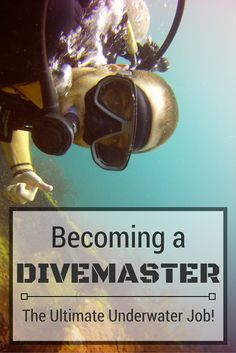 Becoming a Divemaster - The Ultimate Underwater Job. Going from dreaming about the perfect life to living the dream--this article just might inspire you to do the same! (http://www.goatsontheroad.com/becoming-a-divemaster-the-ultimate-underwater-job/)