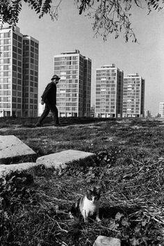 Ataköy-Bakırköy 1966 İstanbul/Ara Güler
