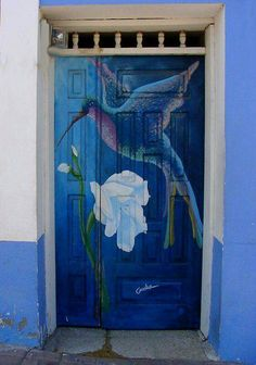 Hummingbird door