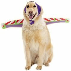 Buzz Lightyear Dog Costume - make just the wings for a simple DIY dog Halloween or running costume. Could easily attach to a harness.