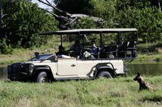 Safari to Savuti Camp | African Safaris | Taga Safaris Africa