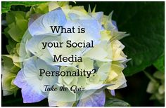 The Blogging Process and What is Your Social Media Personality?