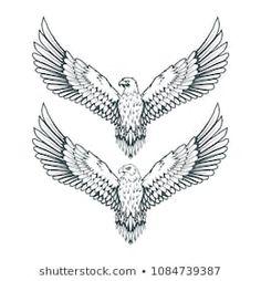 Set Eagles Bald Eagle Logo Wild Stock Vector (Royalty Free) 1084739387 - set of eagles. Head of an eagle. Vector graphics to design. Owl Tattoo Design, Tattoo Design Drawings, Bird Drawings, Tattoo Designs, Eagle Drawing, Wings Drawing, Eagle Wing Tattoos, Tattoo Eagle, Tattoo Bird
