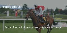 CryptoHorse is the first blockchain based horse breeding game. With this dapp you can exchange and breed crypto horses, later there will be horse races Blockchain Game, Best Crypto, Elon Musk, Horse Breeds, Horse Racing, Kitty, Horses, Animals, Little Kitty