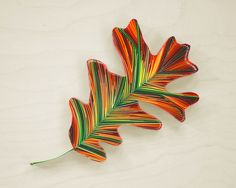 "QUERCUS ALBA [Oak], 3/8"" quilling paper, unmounted. Approximately 3.9 x 6.7 in / 10 x 17 cm. JUDiTH+ROLFE"
