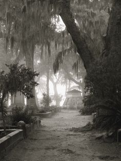 Bonaventure Cemetery, Savannah, photo by Dick Bjornseth. A very old and haunted cemetery in Savannah, Georgia.
