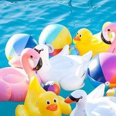 Get your Inflatables Now !!! There swimming out the door and we won't be ordering anymore #shoplocal #popinbeforewepopdown #sandringhamvillage #popupshop #sunnylife #summerisblowingup