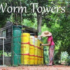 The Permaculture garden is a lot more than an organic garden. It is a carefully…