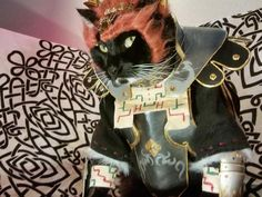 Legend of Zelda Ganondorf cat cosplay Cat Cosplay, Cosplay Makeup, Cosplay Outfits, Legend Of Zelda Characters, Kitten Meowing, Cartoon Games, Kitty, Cats, Anime
