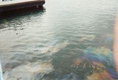 Pearl Harbor-Oil leaking from the U.S.S Arizona.
