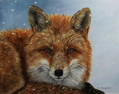 """Daily+Paintworks+-+""""Winter+Fox""""+-+Original+Fine+Art+for+Sale+-+©+Catherine+Temple"""
