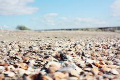 #unbeschwertgeniessen #strand #muscheln