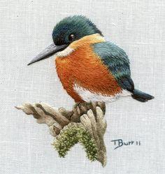 Digital pattern American Kingfisher di TRISHBURREMBROIDERY