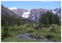 Lee Vining Creek, CA