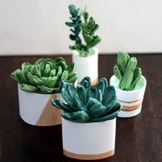 Learn how to create realistic crepe paper succulents.
