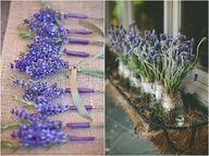 lavender and sage wedding