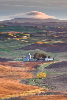 Palouse, Washington: Visit the Palouse Scenic Byway in southeastern Washington state, see the wonders of this area of the country. Description from pinterest.com. I searched for this on bing.com/images