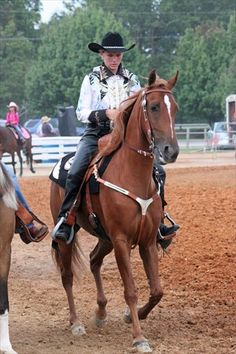 Fentress County TN FAir horse show