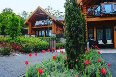 Tulipánok borította #exkluzív rönkházainkban minden perc örök élmény! #avalonresort #whereluxuryisnatural #miskolctapolca #hungary #loghouses #honkahouse #nature #forest #relax #cosymoments #tulips #spring #holiday #dailygram