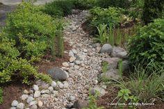 Dry stream-Siri Luckow